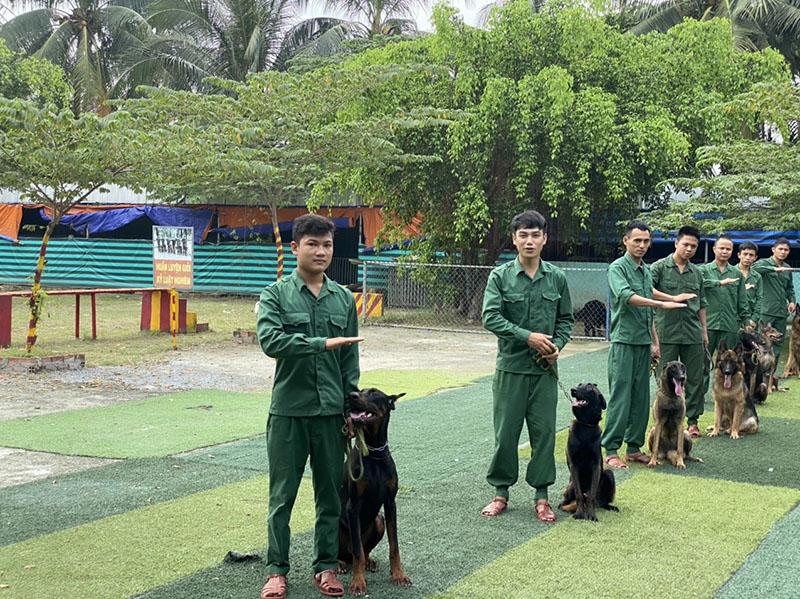 Trung tâm huấn luyện chó chuẩn giáo trình quân đội